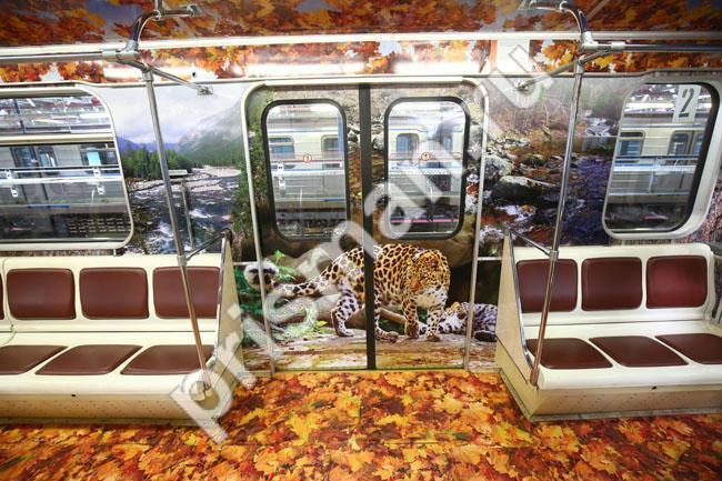 Изображения тигров обработанные в Prisma в московском метро